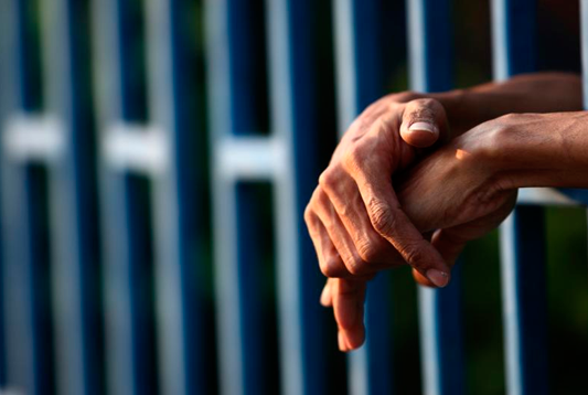 Área de Práctica: Penal